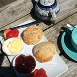 Freshly baked scones for an excellent cream tea