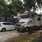 Anaheim RV Park - Nice shady pull through site
