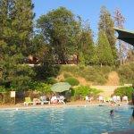 Photo of The Pines Resort