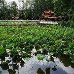 Photo de Grand Park Kunming