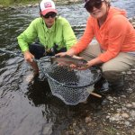 Fly fishing the Yampa