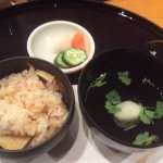Healthy Pal Akagi resmi