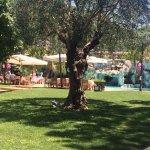 Hotel Villa Albani Foto