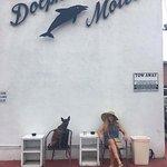 Foto di Dolphin Motel