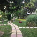 Photo of Gaia Garden
