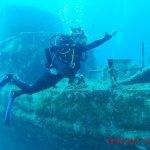 Photo of Seashell Dive Centre