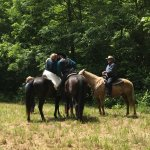 Horseback Wedding first kiss
