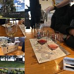 Gorgeous wines presented in flights for tasting at your leisure