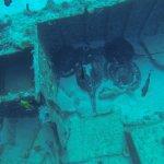 Photo de Octopus Diving Centre