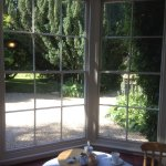 View onto front lawn from out breakfast table