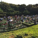 It's a beautiful garden, It worth to visit this place but It's very crowded at the weekends.