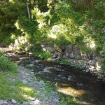 Kittatinny River Beach Campground Picture