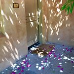flower petals at entry to room