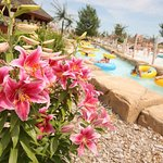 Relax and enjoy the scenery on our lazy river