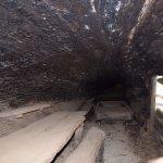 The inside of Tharp's log