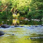 Foto di Cress on Oak Creek