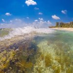 Catch a wave in the clear water at the beach at Generations