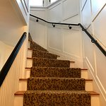 Stairs leading up toTreetop Twin Suite