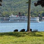 Foto de Tea Island Resort