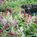 Yaddo gardens & fountains