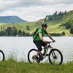 Te Awa Trail