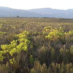 Bontebok National Park Foto