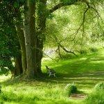 Zum Träumen, Ruhen und Lustwandeln: der Park