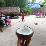 South Pacific Coconuts