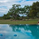 The Lodge's infinity pool