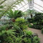 Photo of United States Botanic Garden