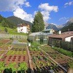 Photo of Hotel Cesa Tyrol