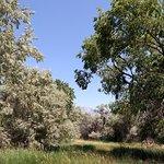 Zdjęcie Ogden Nature Center