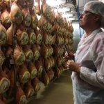 Giulia in the Parma ham plant