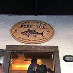 Fish 101 Foto