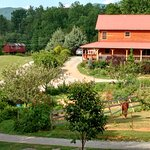 Photo de Pioneer Cabins & Guest Farm