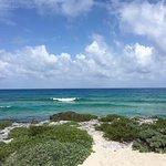Foto de Punta Morena