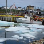 Boavista Harbour - fishermen were stuck as ice blocked the harbour