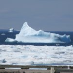 Tough to get out with these monster icebergs just outside the harbour entrance