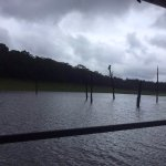 Cloudy and breath taking weather at Periyar Tiger Reserve