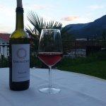 Wein aus Hauseigener Herstellung