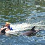 Foto de Dolphins Plus - Key Largo