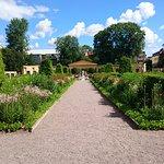 Linne garden in Uppsala, Sweden