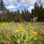Horseback and Wagon Rides are available from our onsite corrals.