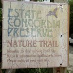 This was our starting point, at Concordia Eco-resort