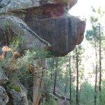 Foto de Pinturas Rupestres Albarracin