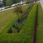 English-style landscaping
