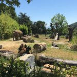Photo of Giardino Zoologico di Pistoia