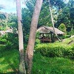 Photo de Shiralea Backpackers Resort