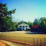 Fair Havens Plantation Foto