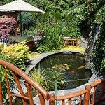 beautiful hidden garden